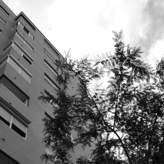 Portada 92 Viviendas en Pino Montano